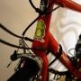 Lizard bike
